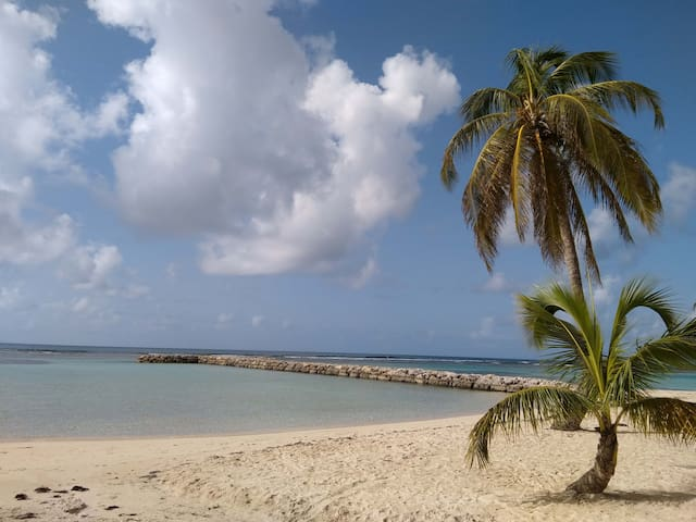 Studio Grenadine RDC : Plage 250m & Commerces 200m - Pointe-a-Pitre