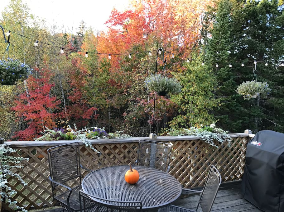 Enjoy the fall foliage from your private deck.
