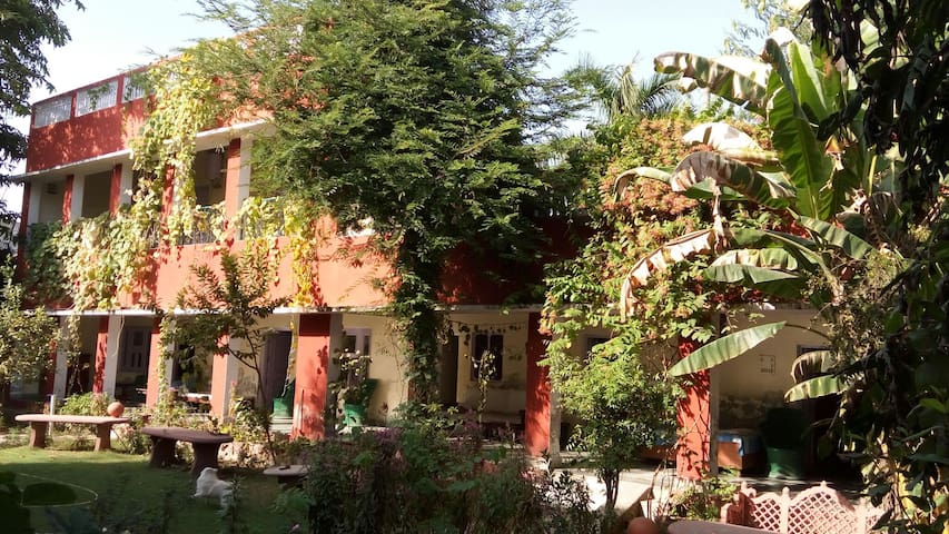 Jungle lodge Home Stay - Bharatpur - Villa