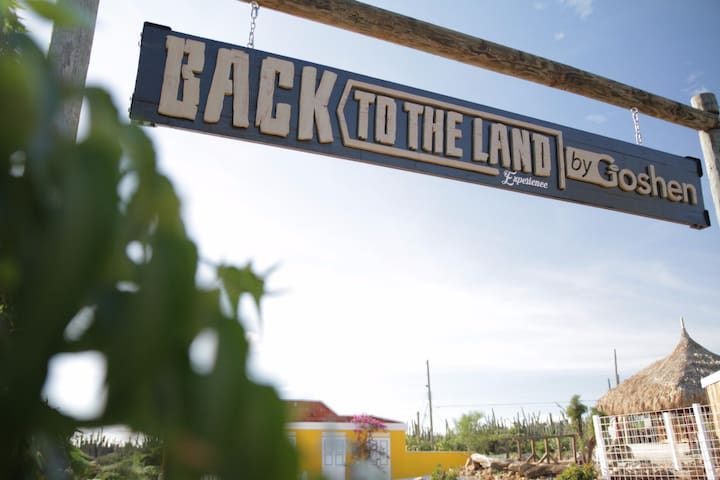 Take our 'Back to the Land' tour, a local cooking experience