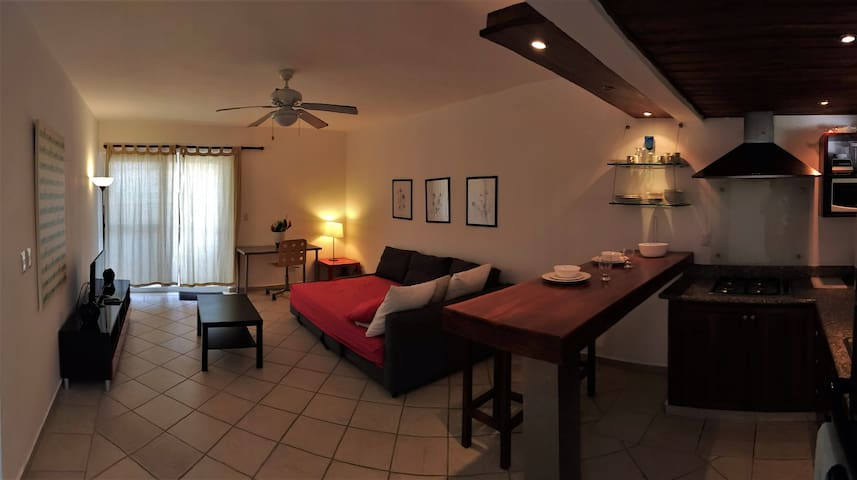 300 Xlarge one bedroom, air conditioned, oceanview