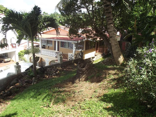Spacious yard area (front view) with access to local fruit trees (coconut tree, avocado tree and guava tree) *fruits are seasonal*