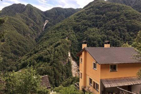 Wild Valley Vista