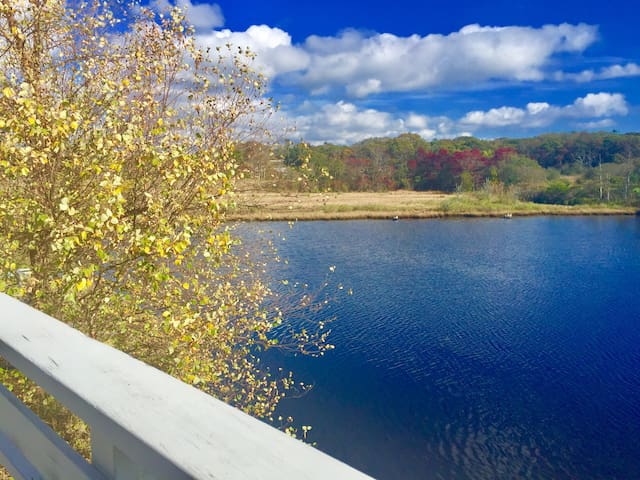 Woods Hole Village: Specials In Fall & Christmas!