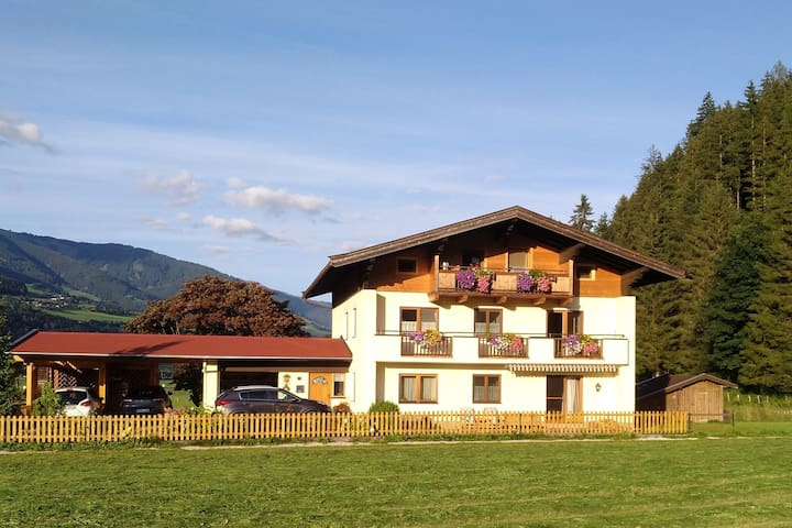 Cozy Holiday Home in Hollersbach im Pinzgau near Ski Area