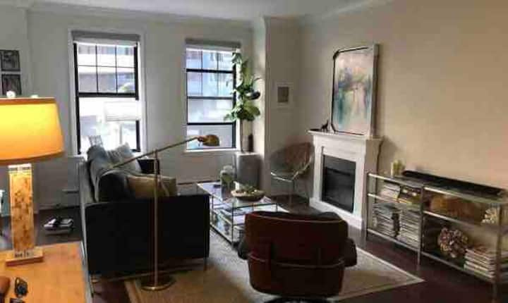 Beautiful bright apartment near Michigan Avenue