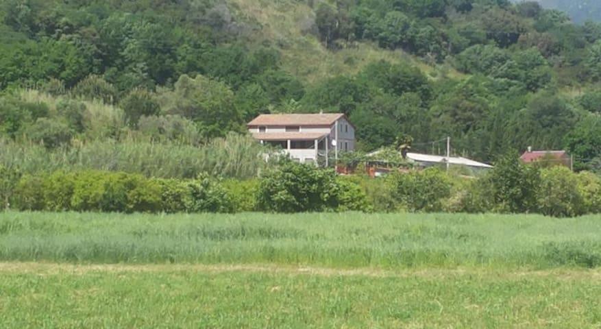 I CEDRI AGRITURISMO - Orsomarso - Penzion (B&B)
