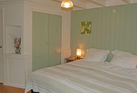 Het Mos, de gezellige groene kamer - Inap sarapan