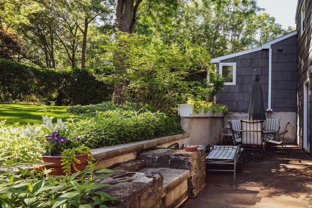 Backyard, outdoor seating area.