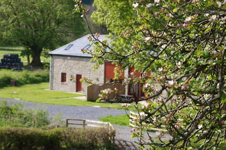 Peregrine Cottage with hot tub - Cynghordy - House