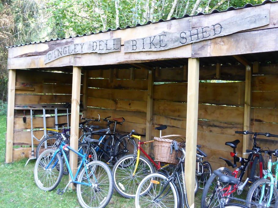 Good range of family bikes