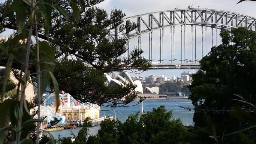 Sydney Harbour NYE Firewrks 3min Free WiFi Netflix
