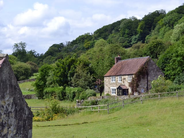 Mill Cottage (UK2449)