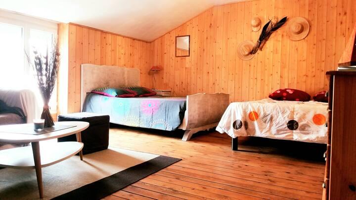 Chambre privée dans charmante maison richelaise