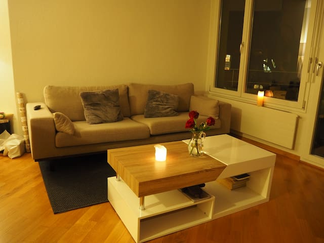 Cozy couch in the heart of Zurich and near river - Цюрих - Кондоминиум