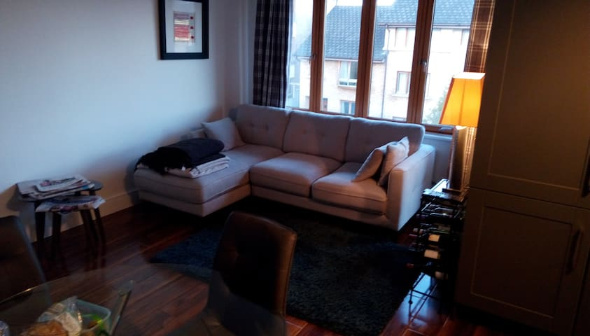 Comfortable room in South Dublin duplex apartment