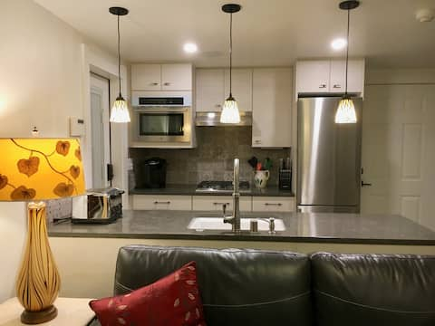 High End Apt in Home Across from Lk Washington