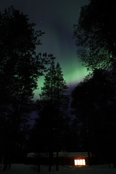 Northern lights, a pic taken by our visitor Nathalie, thank her