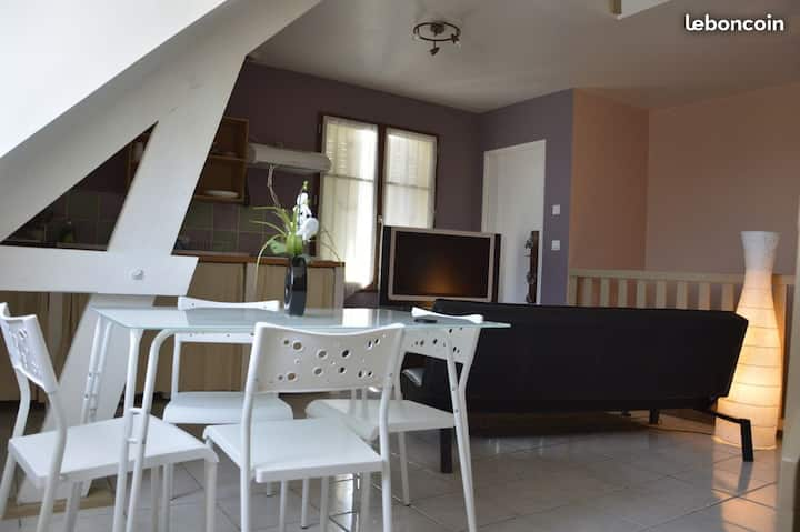 Duplex cosy à 7 min à pied du centre ville Troyes