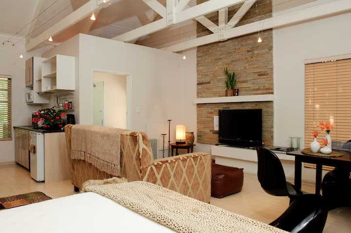 Sunny contemporary loft apartment central location