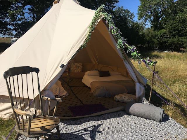Snowdon Bell Tent @ Tyn Y Ffridd Farm