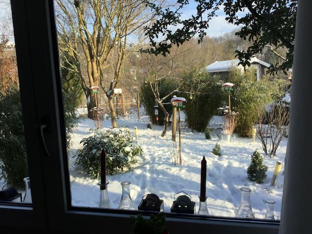 Winter 2017, ein Blick in den Garten im Januar.