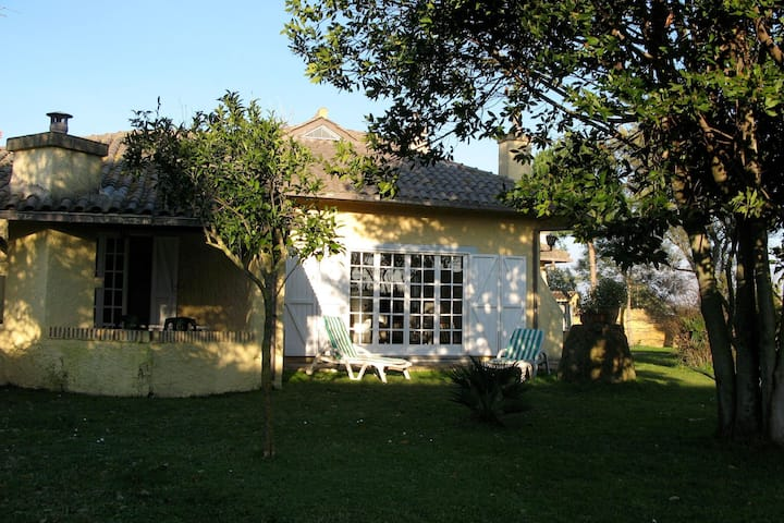 Beautiful Holiday Home in Ardea with Garden