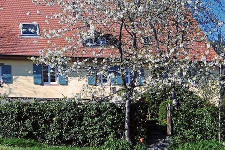 Bettcouch für eine Nacht - Malsburg-Marzell - Apartemen