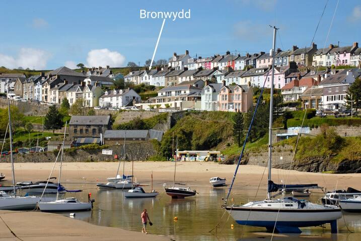 Bronwydd