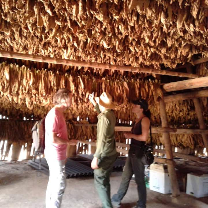 Familia Caraball0(Visit tobacco plantations FRRE)
