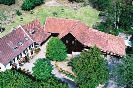 """Logement au pied des Vosges """"Hohneck"""""""