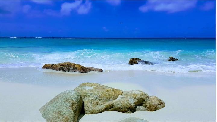 7 - TRUE BEACH LOVER        2BDR