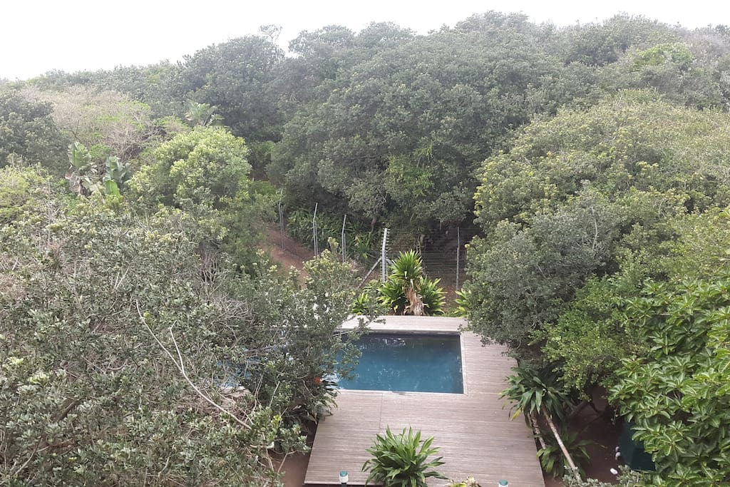 View of the swimming pool from the Villa.