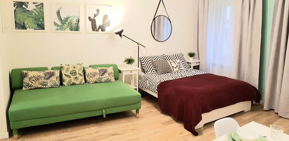 Cozy modern STUDIO GREEN APARTMENT in Old Town