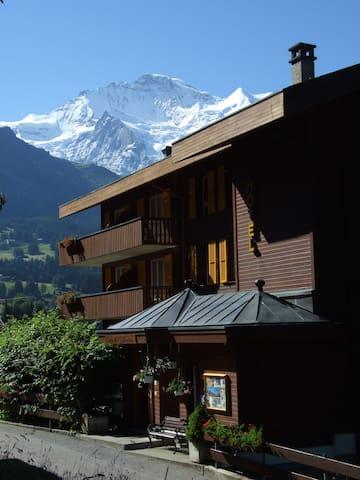 Für 2 Pers. Budget Zimmer Hotel Bellevue Wengen