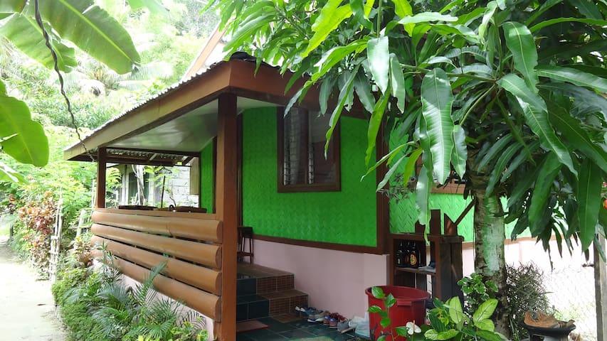 MANGOs Wild Homestay - San Vicente
