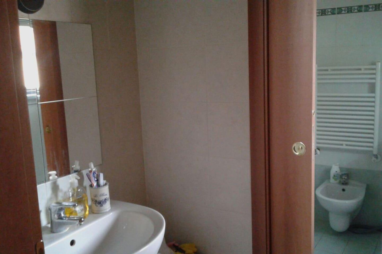 La zona bagno che divide il lavabo dagli altri accessori  (doccia)