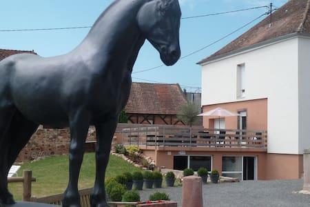 Gîte Equestre/Domaine du Haras de Saint-Pierre *** - Saint-Pierre - Apartamento