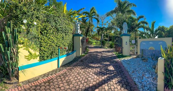 Lions Gate Rincon Villas Studio