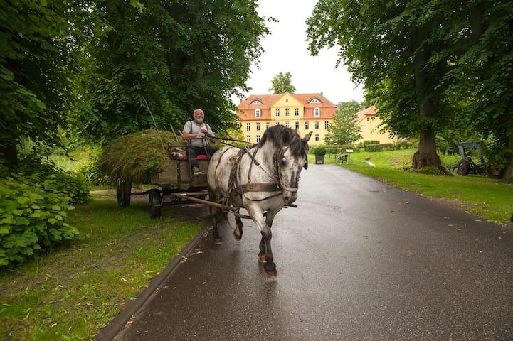 """Schloss Lühburg - Ferienwohnung """"Förster"""" (55 qm)"""