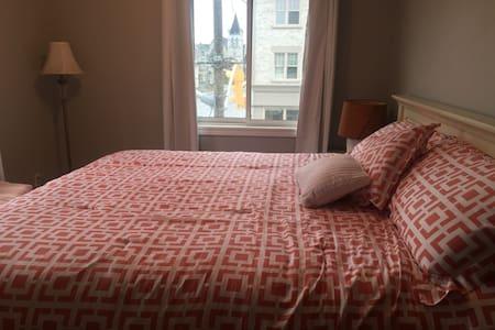 Spacious downtown apartment - Kingston - Apartment