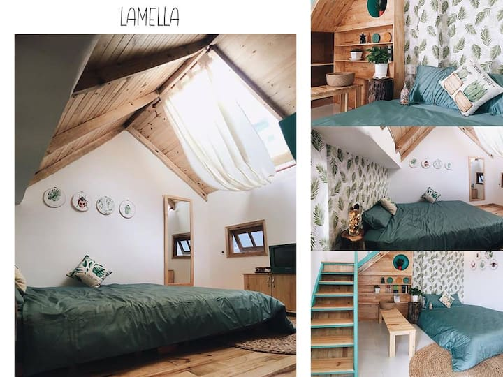 Home de Su- studio apartment (room Lamella)