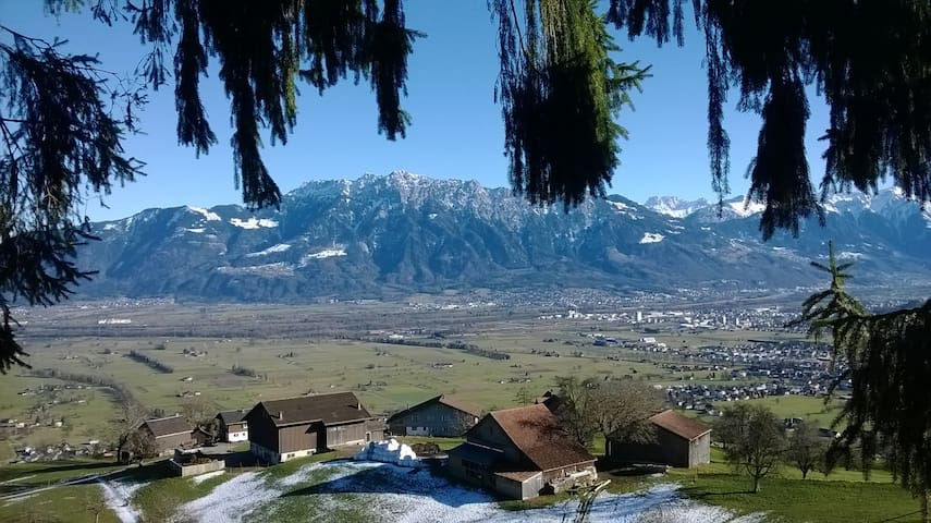 BIO- Berg-Bauernhof Weberhüser
