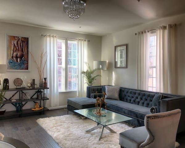 D.C. Metro Area Luxury Hotel-Like Townhouse