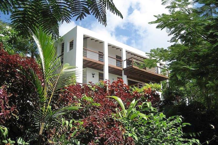 Private Marigot Bay St Lucia Villa with a view.