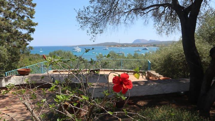Villa Golfo Marinella 150m dal mare