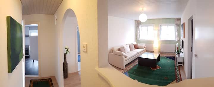 Charming apartment in Schlieren close to Zurich