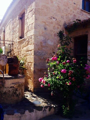 Paradise in the center of Aegina