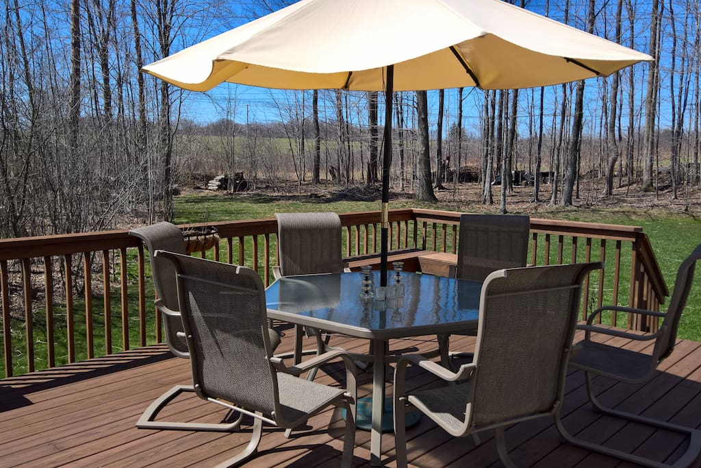 Beautiful wooded view from deck and backyard