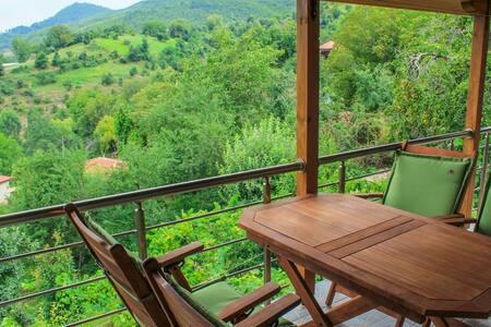 Monte Cristo,Villas - Rental Rooms